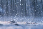 В Лесном ожидаются заморозки и грозы